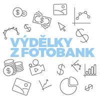 Výdělky ve fotobankách 2015